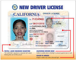 Ca drivers license