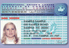 Drivers license for foreigner
