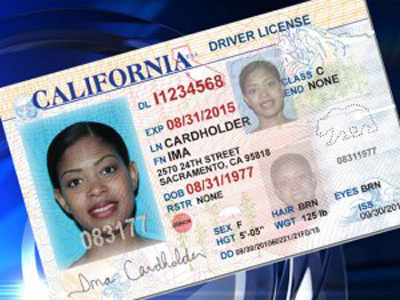 California drivers license undocumented